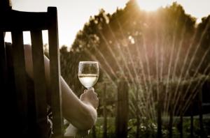people-summer-garden-sitting